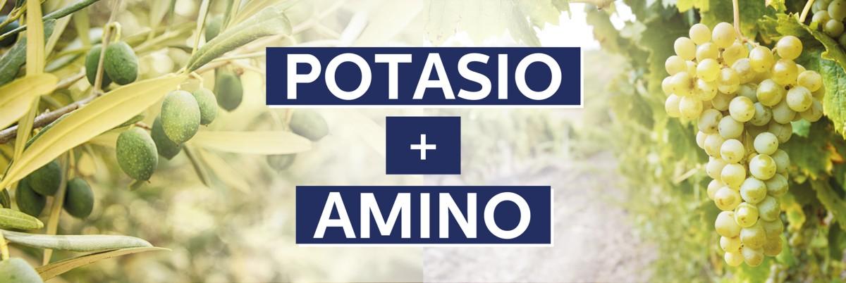 Fertigota Amino Potasio