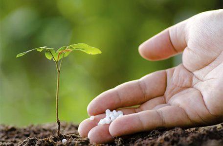 fertilizantes con materia orgánica